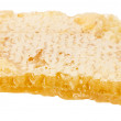 Honeycombs isolated on the white background — Stock Photo #67376639