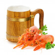 Wooden mug with beer and red lobsters isolated on a white backgr — Stock Photo #70292531