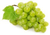 Uva verde aislado sobre fondo blanco — Foto de Stock