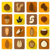 Nuts Icons Set — Stock Vector