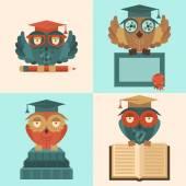 Owls in graduation caps set flat — Stock Vector