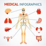Human organs infographic — Stock Vector #53324419