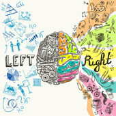 Brain hemispheres sketch — Stock Vector
