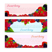 Berries banners set horizontal — Stock Vector