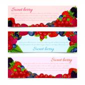 Berries banners set horizontal — Vettoriale Stock
