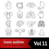 Human Organs Icons Set — Stock Vector
