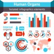 Human organs infographic — Stock Vector #53849497