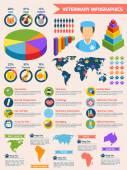 Jeu de vétérinaire infographique — Vecteur