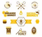 Bee honey label colored — Stock Vector