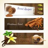 Spices banners horizontal — Vector de stock