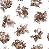 Sketch berries seamless pattern — Stock Vector
