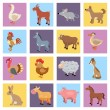 Farm animals set — Stock Vector #55382025