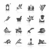 Spices Icons Black — Stock Vector