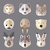Animal portrait flat icon set — Vector de stock