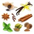 Herbs and spices set — Stock Vector #56156315