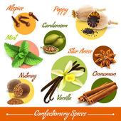 Herbs and spices set — Stock Vector