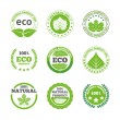 Ecological leaves labels icons set — Stock Vector #59248957