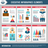 Executive Infographics Set — Stock Vector