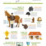 Jockey Infographics Set — Stock Vector #69391411
