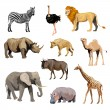 Wild African Animals Set — Stock Vector #69393081