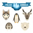Polar Animals Set — Stock Vector #69395751