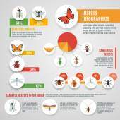 Insects Infographic Set — Stock Vector