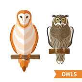 Owls Front Set — Stockvektor