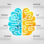 Brain Concept Flat — Stock Vector #77158385