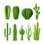 Cactus Realistic Set — Stock Vector #77527188