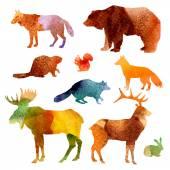Set de acuarela animales — Vector de stock