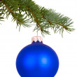 Blue Christmas toy on a branch — Stock Photo #59092845