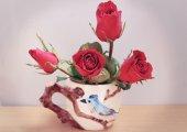 Red rose — Foto de Stock