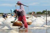 Tuz çiftlik — Stok fotoğraf