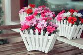 Künstliche Blumen Topf — Stockfoto