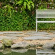Bench in garden — Stock Photo #61848201