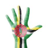 Open hand raised, multi purpose concept, Dominica flag painted - — Stock Photo