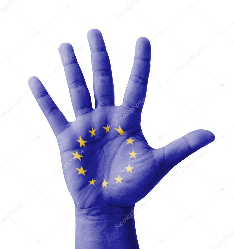 the true purpose of the european union European elections will neither lend new credibility to the european parliament nor give the european union greater democratic legitimacy yet the greater objections to the parliament are over its failure to meet its real purpose it is certainly true that the parliament has more.