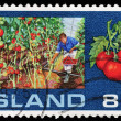 Iceland stamp — Stock Photo #56602545