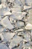 Ice broken — Photo