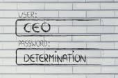 User CEO, password Determination — Foto de Stock