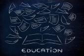 La educación es el clave, libro con páginas volando alrededor — Foto de Stock