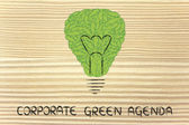 Lightbulb made of leaves, concept of green economy — Stock Photo