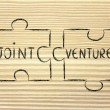 Jigsaw puzzle with the words Joint Venture — Stock Photo #66095547