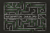 Search bar surrounded by a maze — Stock Photo