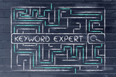 Maze with search tags seeking for a keyword expert — Stock Photo