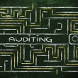 Maze with a search tag about auditing — Stock Photo #70571149