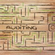 Maze with a search tag about auditing — Stock Photo #70571943