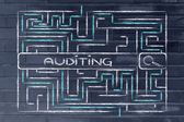 Maze with a search tag about auditing — Stock Photo