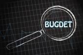 预算与业务图 — 图库照片