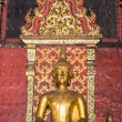 Old Golden Buddha Statue In Chapel — Stock Photo #57293545